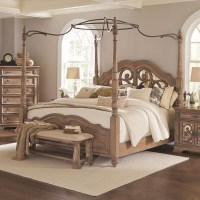 Coaster Ilana California King Canopy Bed with Mirror Back ...