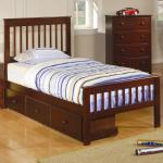 Coaster Parker Twin Slat Bed With Underbed Storage Drawer Unit Rife S Home Furniture Panel Beds