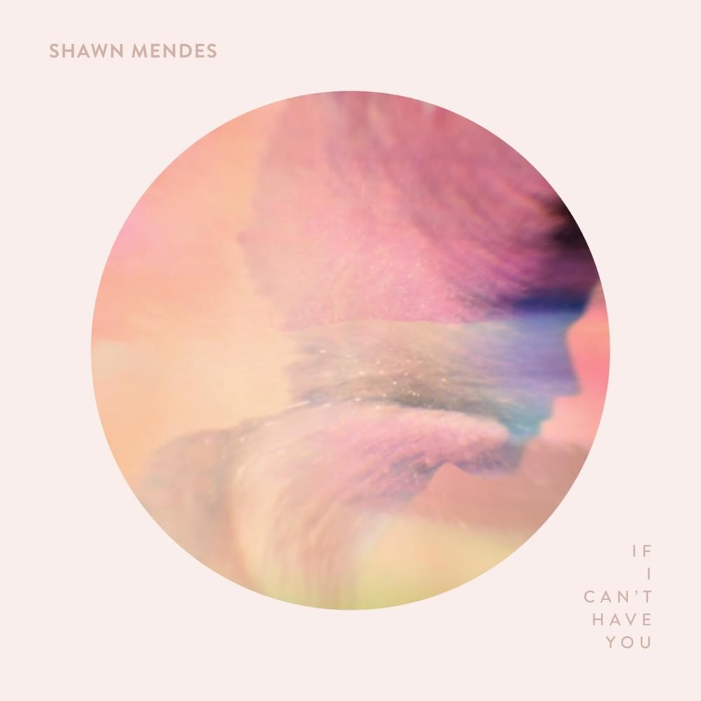 shawn mendes if i