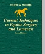 Current Techniques in Equine Surgery and Lameness