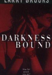 Darkness Bound Pdf Book