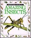 Amazing Insects (Eyewitness Junior #26)
