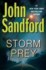 Book Review: John Sandford's Storm Prey