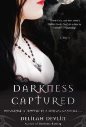 Darkness Captured (Dark Realm, #4)