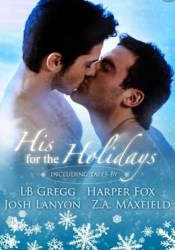 His For The Holidays Pdf Book
