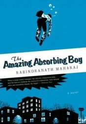 The Amazing Absorbing Boy Pdf Book