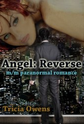 Angel: Reverse (A:R Earth, #1)