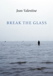 Break the Glass Pdf Book