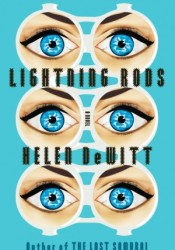 Lightning Rods Pdf Book