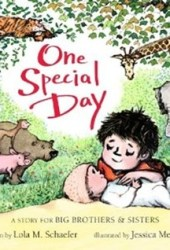 One Special Day: A Story for Big Brothers and Sisters Pdf Book