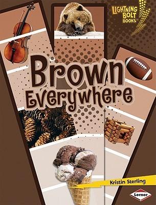 Brown Everywhere (Lightning Bolt Books)