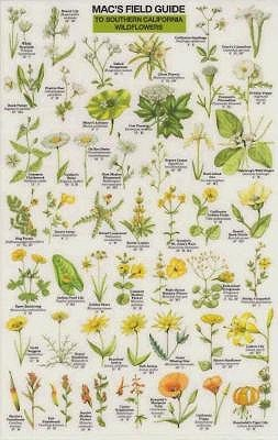 Mac's Field Guide to Southern California Wildflowers