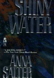 Shiny Water (Michael Stone, #1) Pdf Book