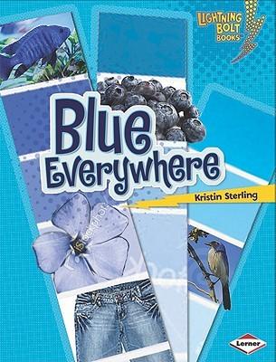 Blue Everywhere (Lightning Bolt Books)