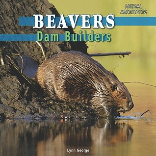 Beavers: Dam Builders
