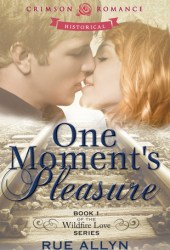 One Moment's Pleasure (Wildfire Love, #1)