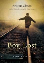 Boy, Lost Pdf Book