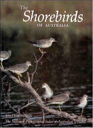The Shorebirds of Australia