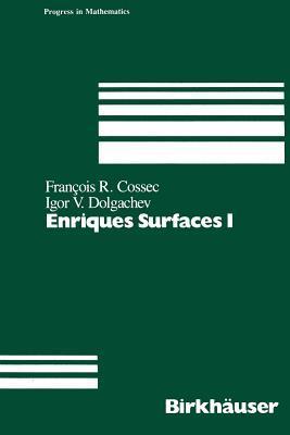 Enriques Surfaces I