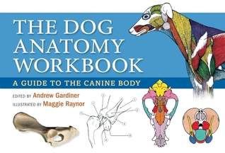 Dog Anatomy Workbook: A Learning Guide to Students, Breeders and Canine Enthusiasts