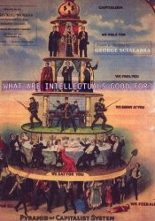 What Are Intellectuals Good For? Pdf Book