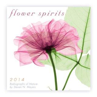 Flower Spirits Calendar: Radiographs of Nature