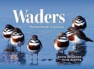 Waders: The Shorebirds of Australia
