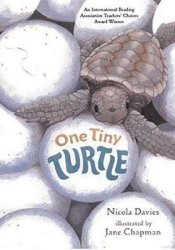 One Tiny Turtle Pdf Book