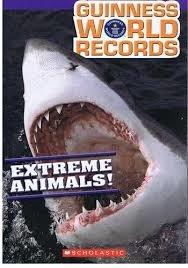 Extreme Animals!