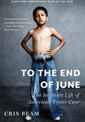 To the End of June: The Intimate Life of American Foster Care Pdf Book