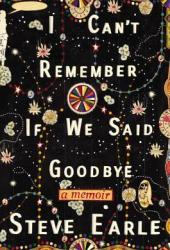 I Can't Remember If We Said Goodbye Book