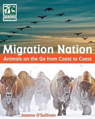 Image result for migration nation animals on the go from coast to coast