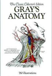 Gray's Anatomy Pdf Book