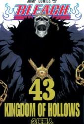 Bleach―ブリーチ― 43 [Burīchi 43] (Bleach, #43)