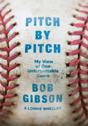 Pitch by Pitch: My View of One Unforgettable Game Pdf Book