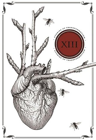 Thirteen: Stories of Transformation