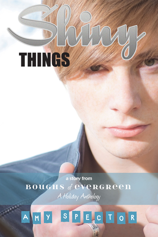 Book Cover Shiny Things by Amy Spector