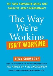 The Way We're Working Isn't Working: The Four Forgotten Needs That Energize Great Performance Pdf Book