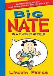 Big Nate: In a Class by Himself (Big Nate Novels, #1) Pdf Book
