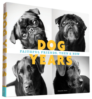 Dog Years: Faithful Friends, Then & Now