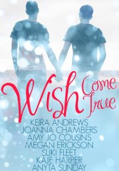 Wish Come True Pdf Book