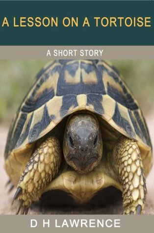 A Lesson on a Tortoise
