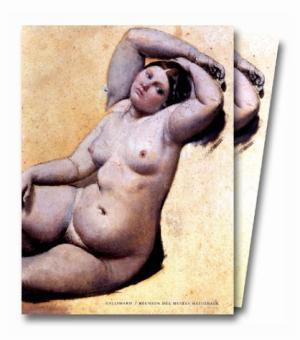 Dessins d'Ingres: Catalogue raisonne des dessins du Musee de Montauban