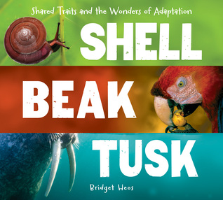 Shell, Beak, Tusk: Shared Traits and the Wonders of Adaptation