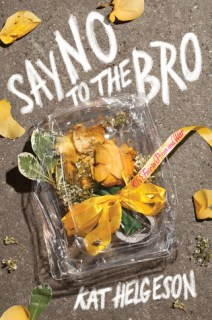 Image result for say no to the bro hegelson