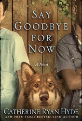 Say Goodbye for Now Book Pdf