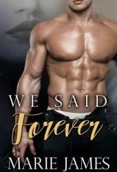We Said Forever Book Pdf