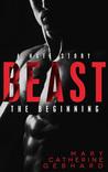 Beast: The Beginning (Hate Story, #1)