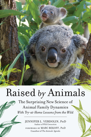 Raised by Animals: How Dolphins Bond, Why Meerkats Babysit, and Other Lessons from Families in the Wild