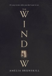 The Window Book